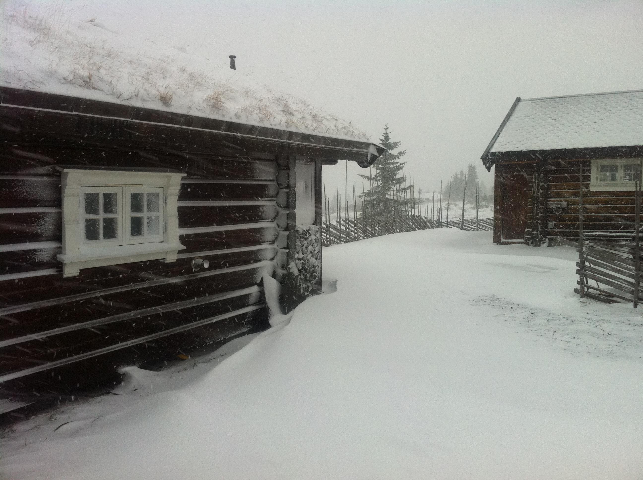 Vinter i Ringsakerfjellet. Foto: Erik Helli