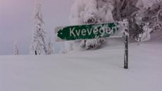 Mye snø